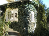 Budapest XX. kerület eladó családi ház Pesterzsébet 100m2 2.5 szoba ingatlan hirdetéshez feltöltött kép