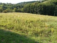 Zalaegerszeg eladó 10813m2 mezőgazdasági telek 7035m2 szántó 3069m2 rét ingatlan hirdetéshez feltöltött kép